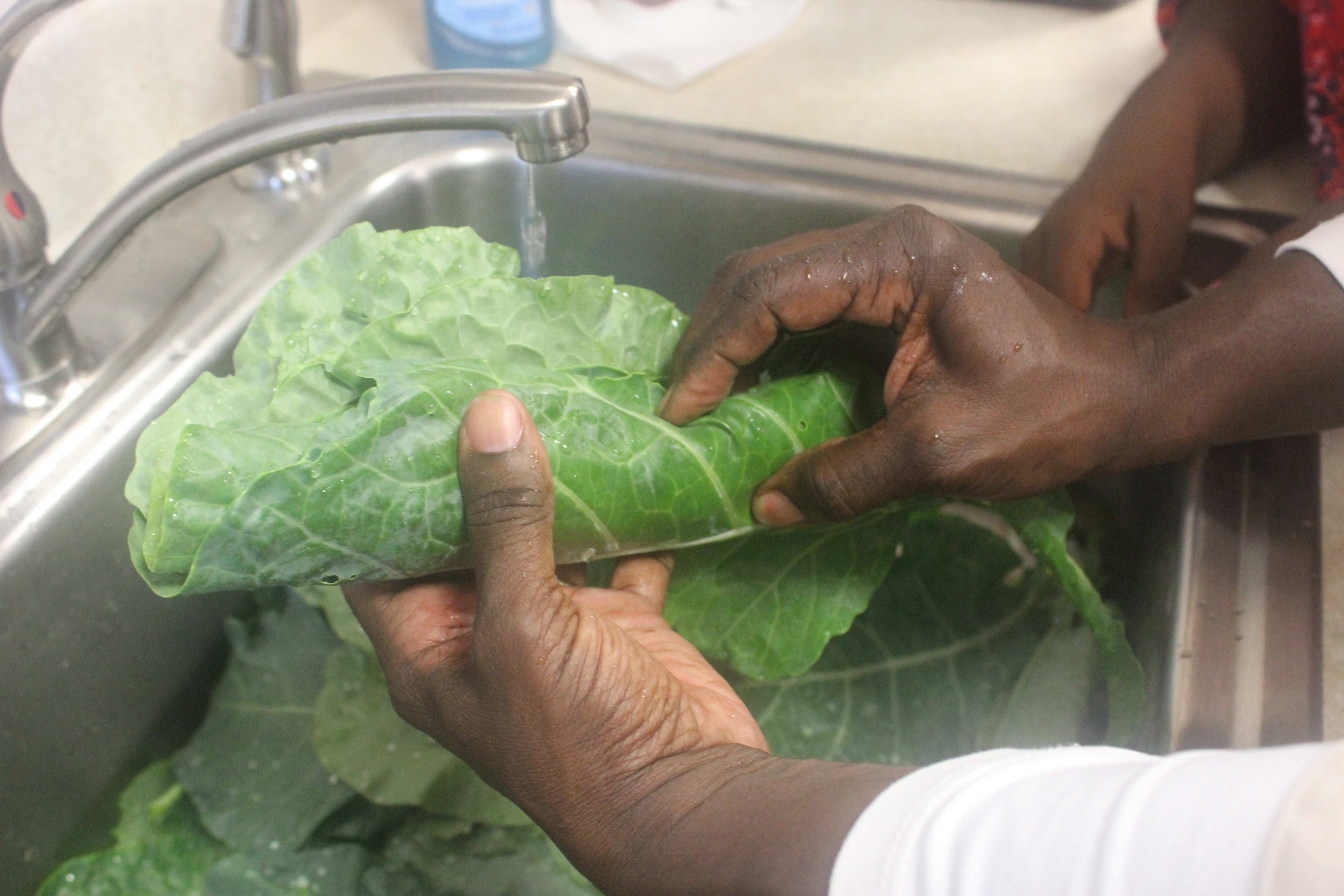 Lessons to wash greens from the garden.